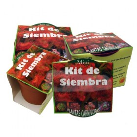mini_kit_de_siem-(3)5