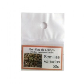 semillas-de-lithops-pack-502